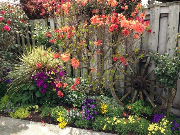 Mary's Place garden in Hawera Janna Schreier