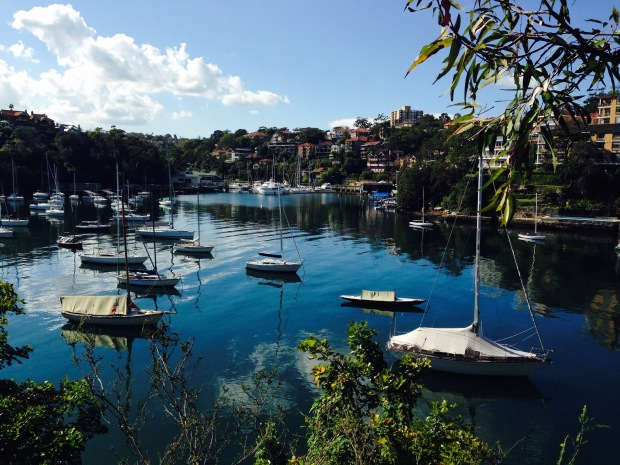 Mosman Bay Marina from Cremorne Point. Janna Schreier