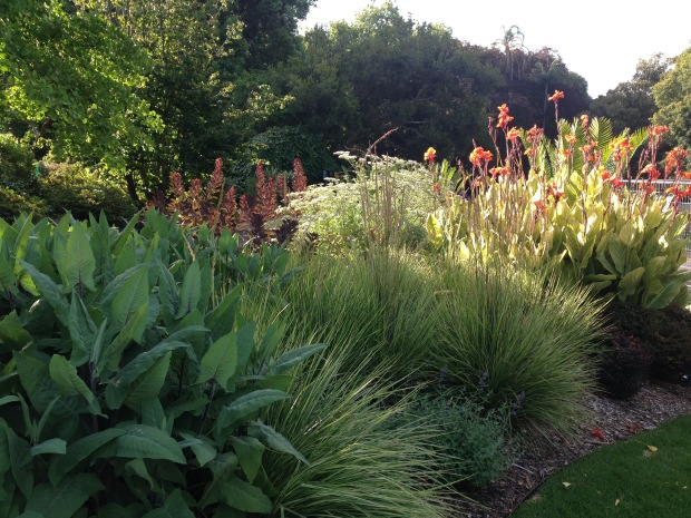Orange and lime colours in the newly planted bed at the Melbourne Botanic Garden. Janna Schreier