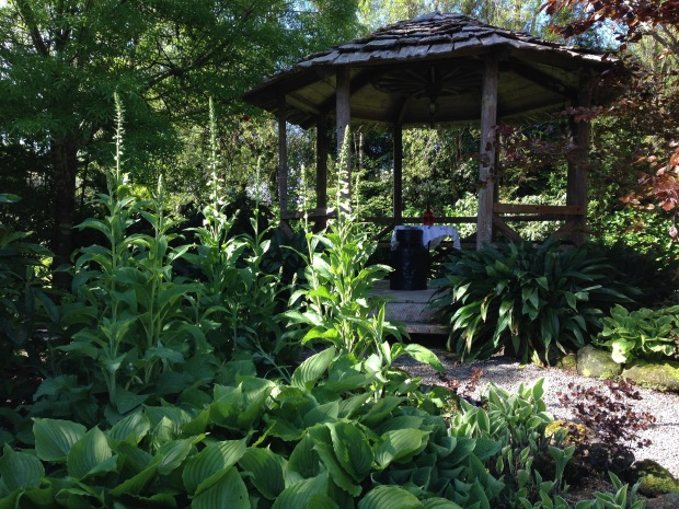 Restful gazebo at Taranaki Janna Schreier