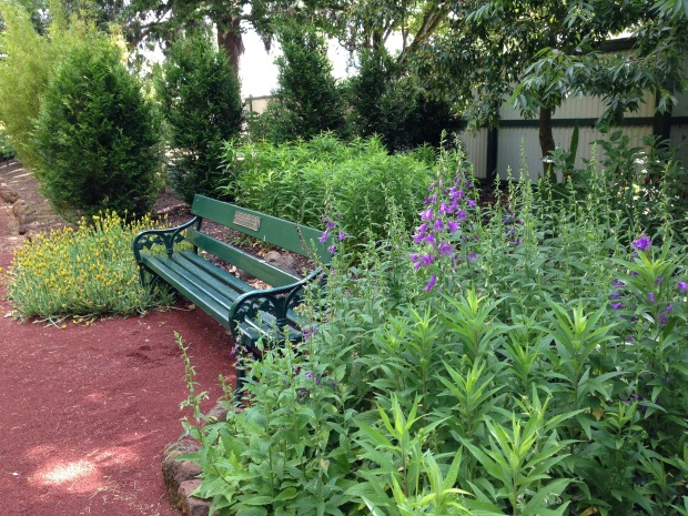 Seat set into the garden at Ballarat Botanic Gardens. Janna Schreier