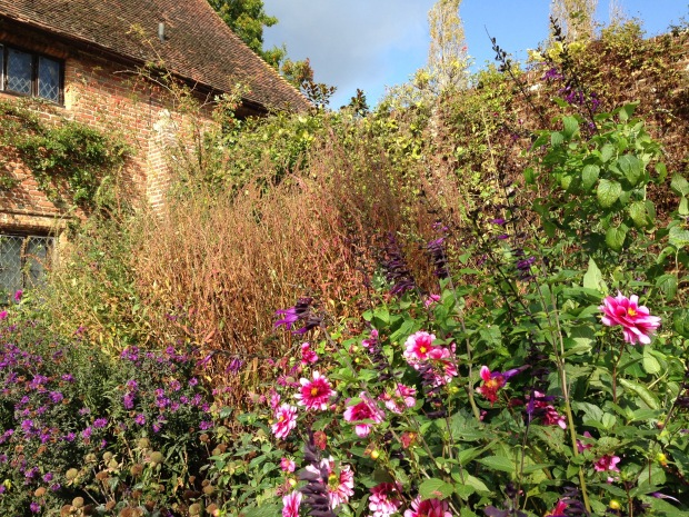 Sissinghurst Purple Border Janna Schreier