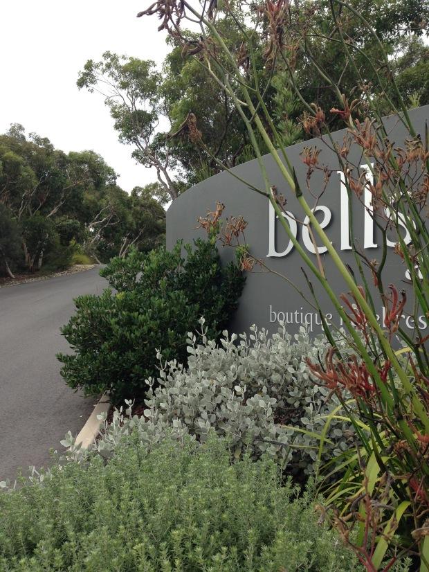 Bells of Killcare. Janna Schreier