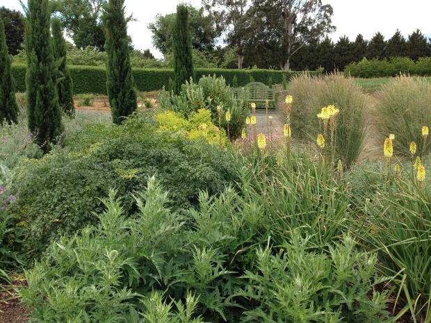 Green and yellow border at Lambley Nursery. Janna Schreier