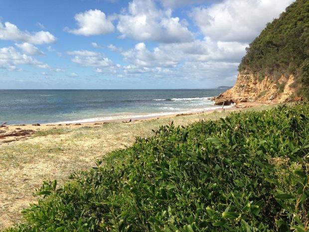Maitland Beach, Central Coast. Janna Schreier