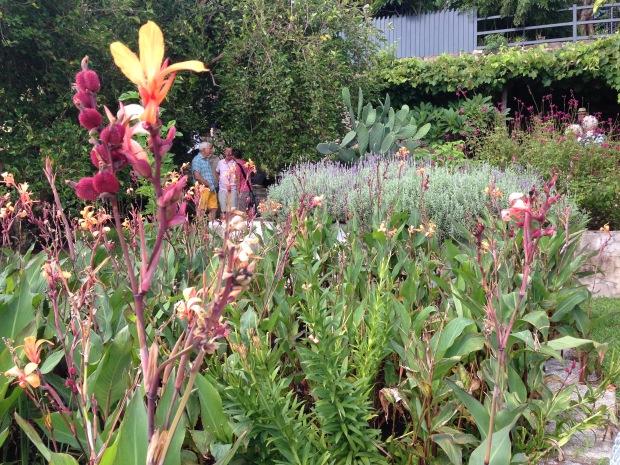 Mass of pink, orange and purple flowers at Wyoming. Janna Schreier