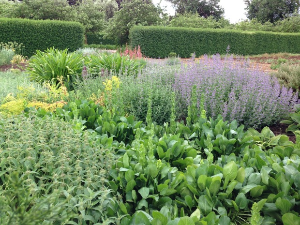 Mixed border at Lambley Nursery. Janna Schreier