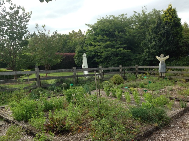 Scarecrow in the herb garden at Bells. Janna Schreier