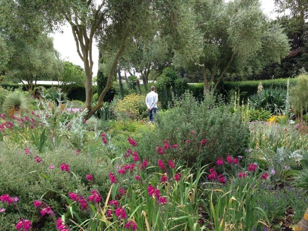 The Dry Garden at Lambley Nursery. Janna Schreier-2