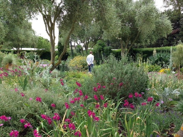 The Dry Garden at Lambley Nursery. Janna Schreier-2