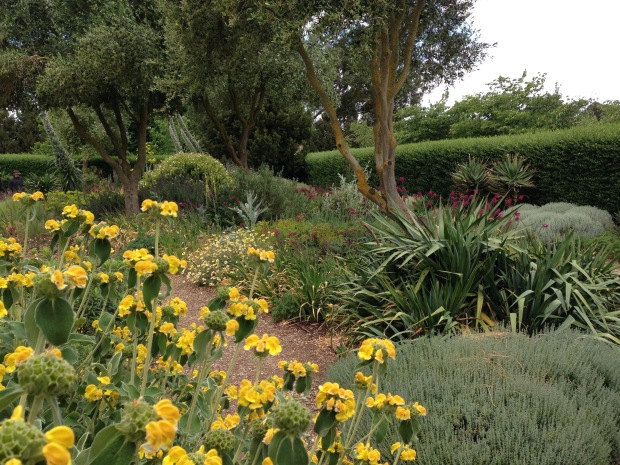 The Dry Garden at Lambley Nursery. Janna Schreier