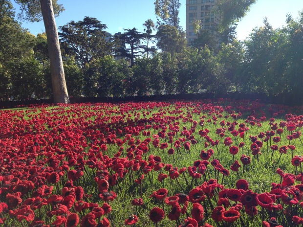 5,000 Poppies at MIFGS. Janna Schreier