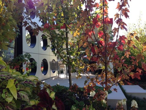 Autumn colours at 'Resonate', MIFGS. Janna Schreier