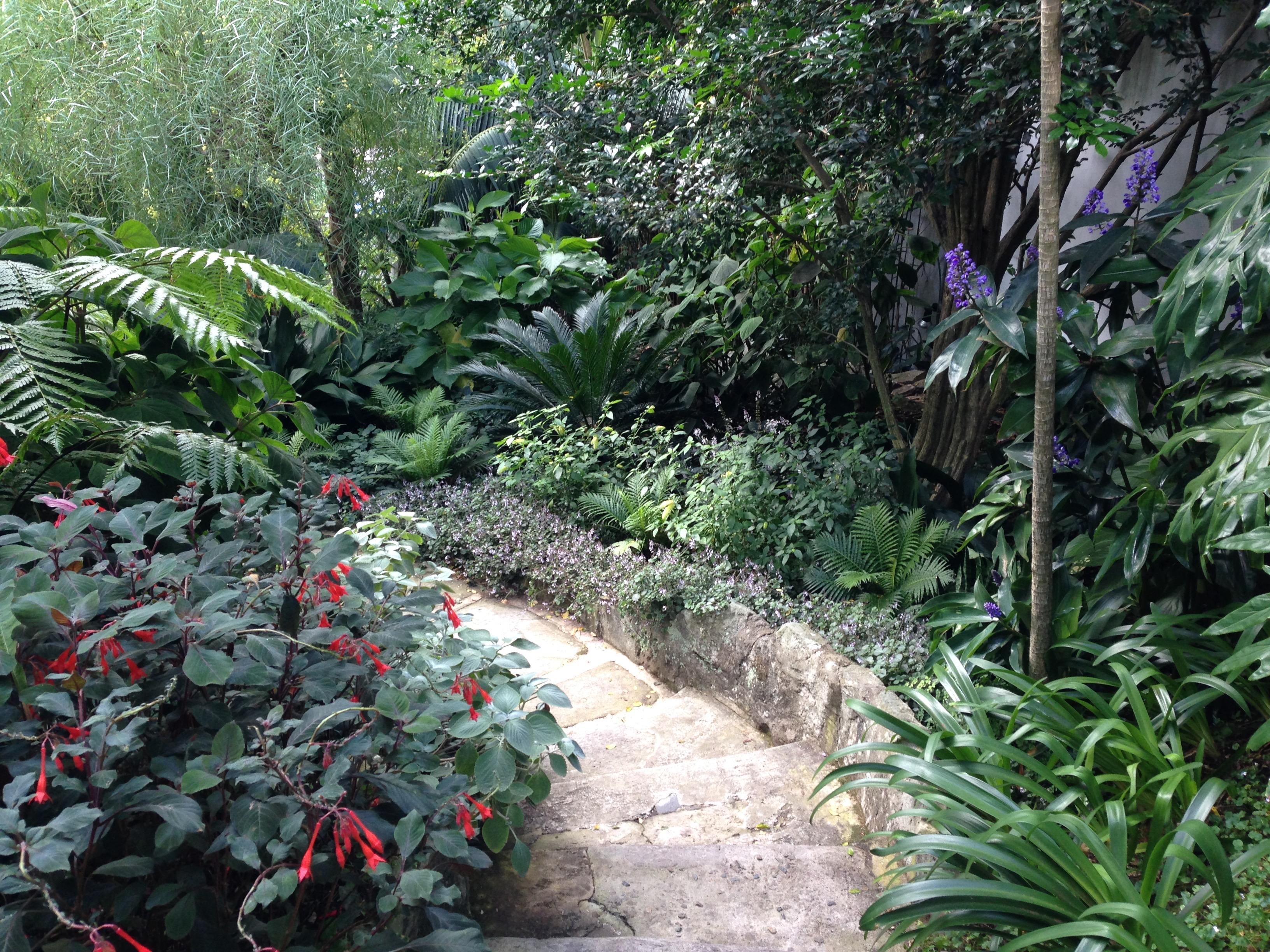 sub tropical garden design ideas – izvipi