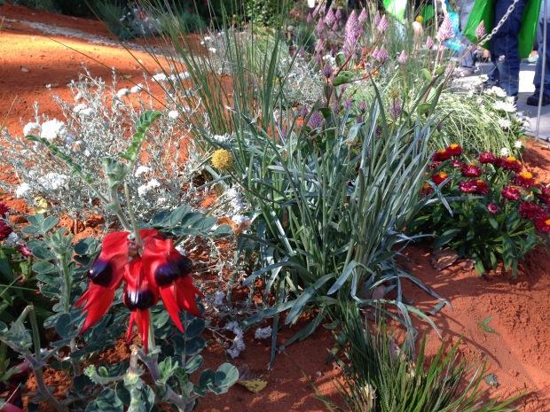 'The Bronzed Brolga' planting by Candeo Design. Janna Schreier