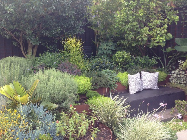 Wonderful planting at Brendan Moar's St Peters garden. Janna Schreier