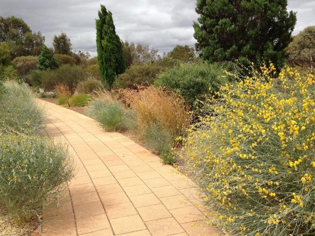 Arid Lands Botanic Garden. Janna Schreier