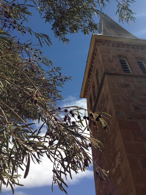 Bungaree chruch surrounded by olive trees. Janna Schreier
