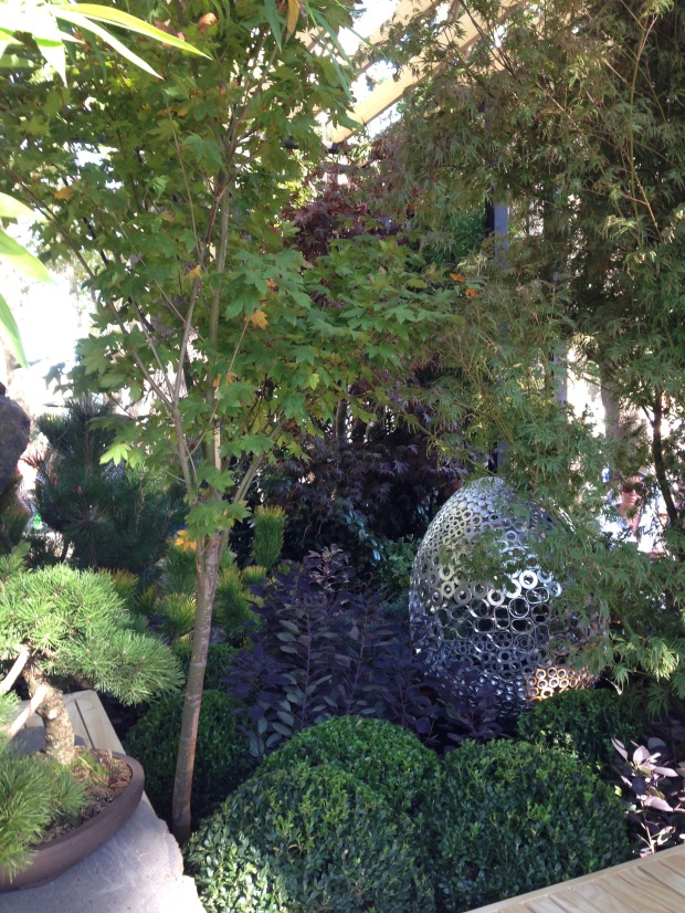 Contrasts: Bonsai next to a 3 metre Acer, clipped balls next to free forms. Janna Schreier