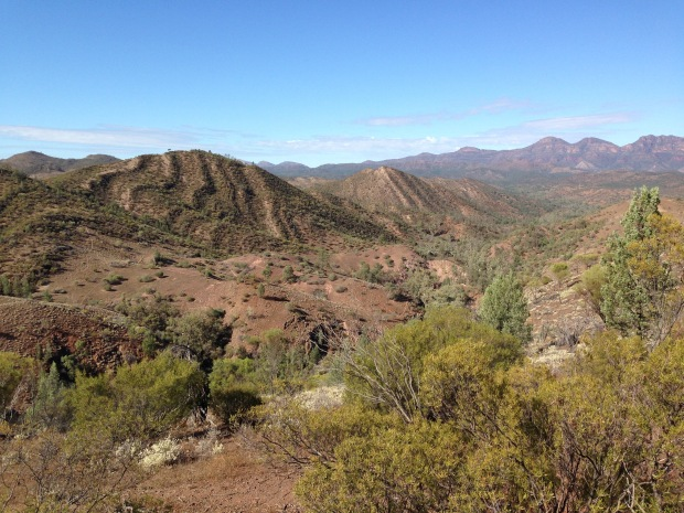 The bleak but stunning landscape of the Flinders Ranges. Janna Schreier