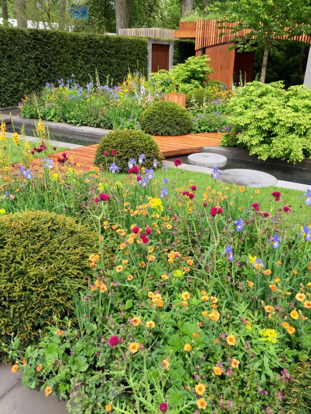 Chelsea show gardens 2015 janna schreier garden design for Garden trees homebase
