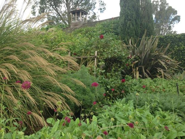 Autumn texture at Glenmore House. Janna Schreier