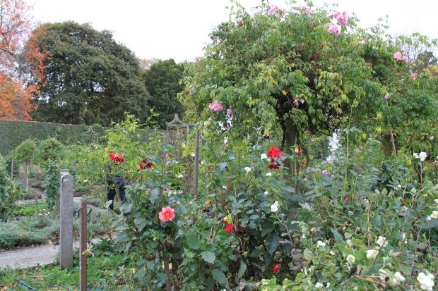 Cutting garden at Cruden Farm. Janna Schreier