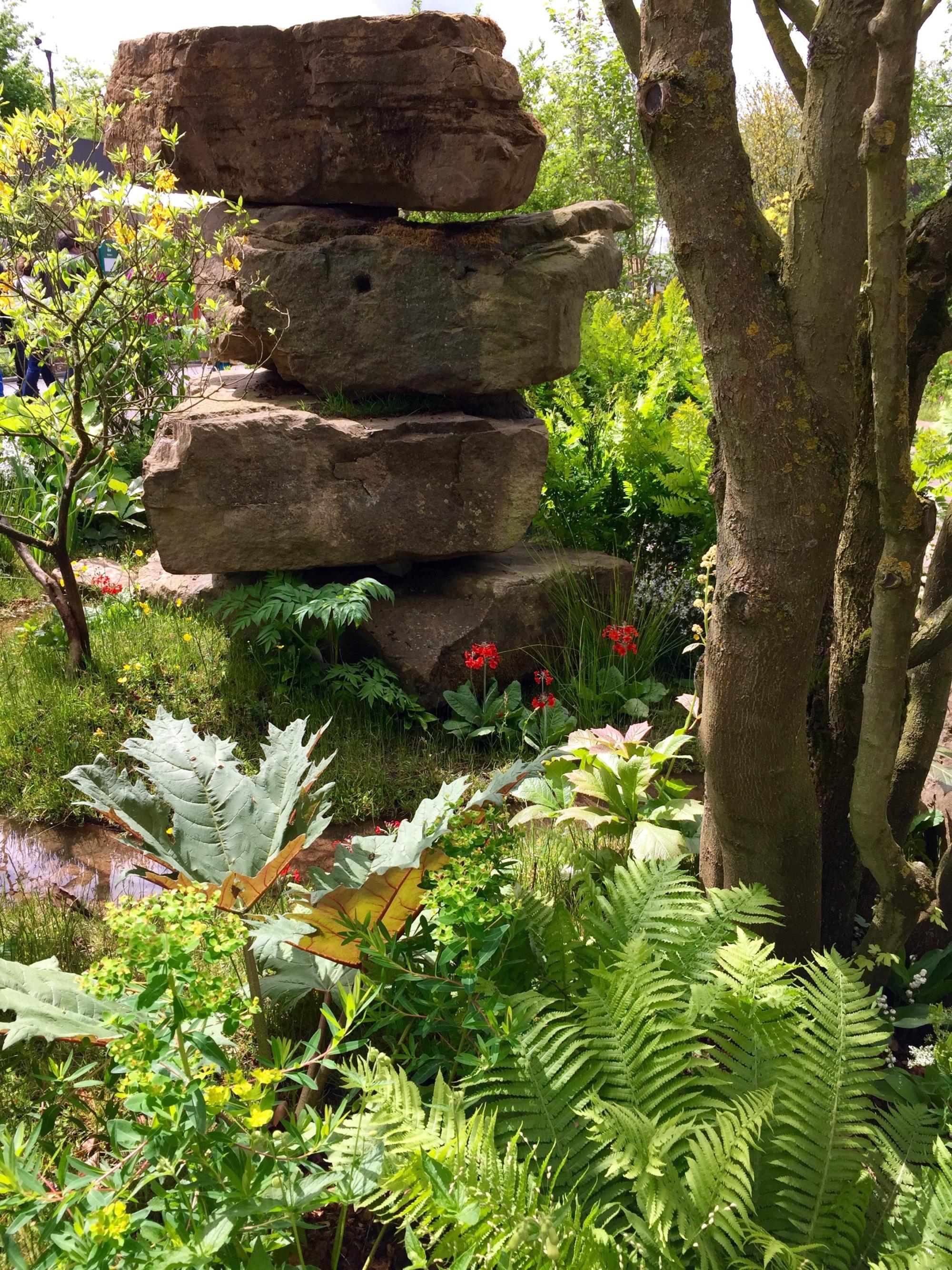 chelsea show gardens 2015 – janna schreier garden design