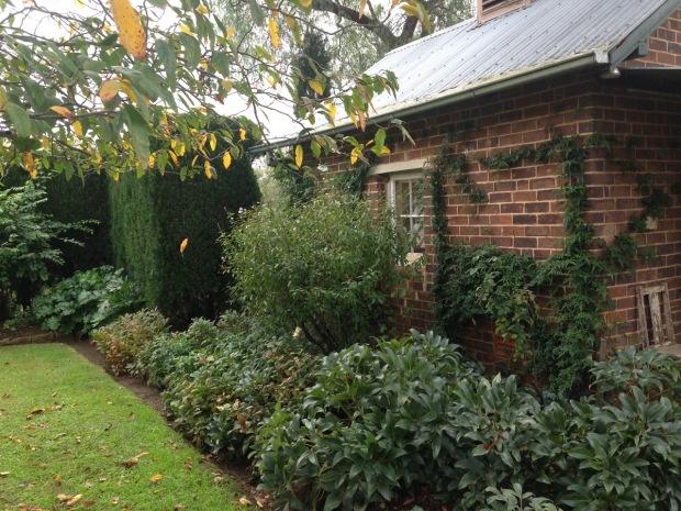 Low maintenance planting at Glenmore House. Janna Schreier