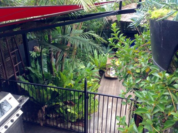 Plants everywhere at 'Saturday'. Janna Schreier
