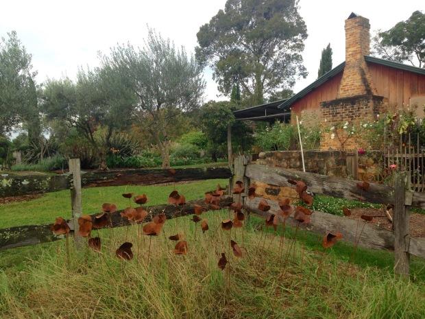 Poppy field at Glenmore House. Janna Schreier