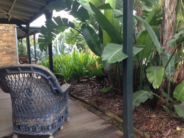 Protected tropical plants at Glenmore House. Janna Schreier