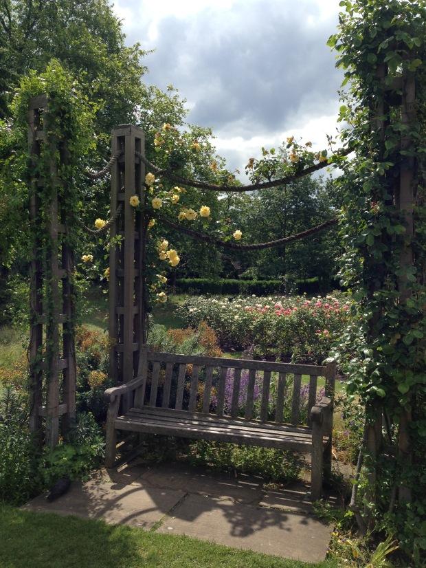 Climbing roses along ropes in Regent's Park. Janna Schreier