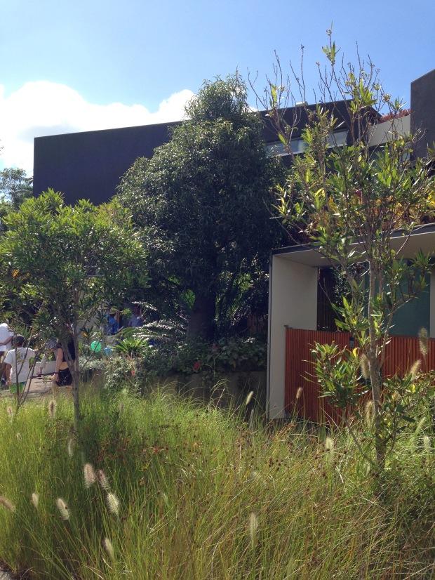 Mark Paul's Mosman Garden. Janna Schreier