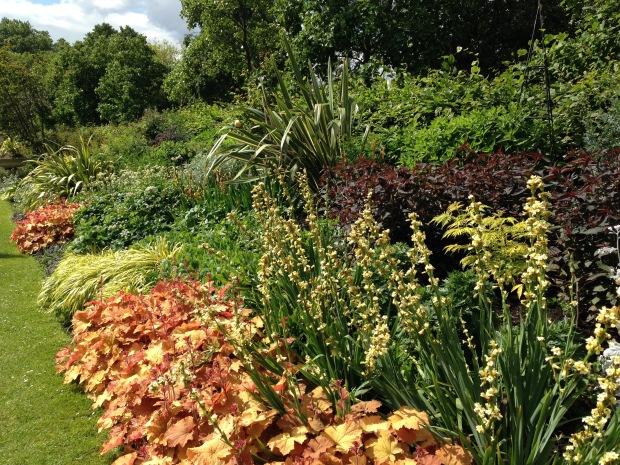 Orange and Yellow Herbaceous Border, Regent's Park. Janna Schreier