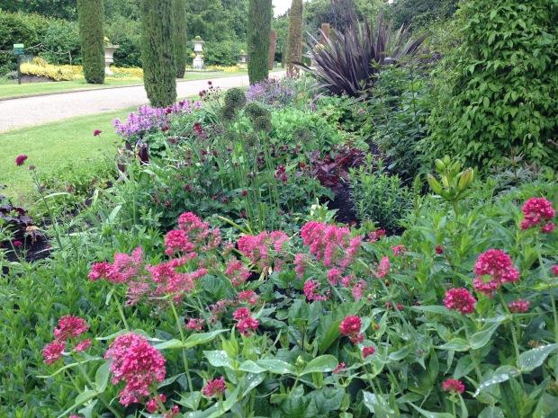 Pink and Burgundy Herbaceous Border, Regent's Park. Janna Schreier