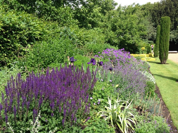 Purple Herbaceous Border, Regent's Park. Janna Schreier