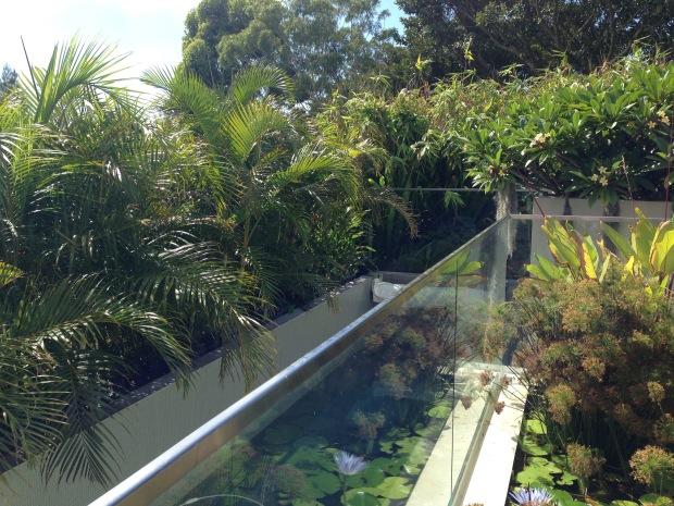 Unobtrusive swimming pool at Mark Paul's garden. Janna Schreier
