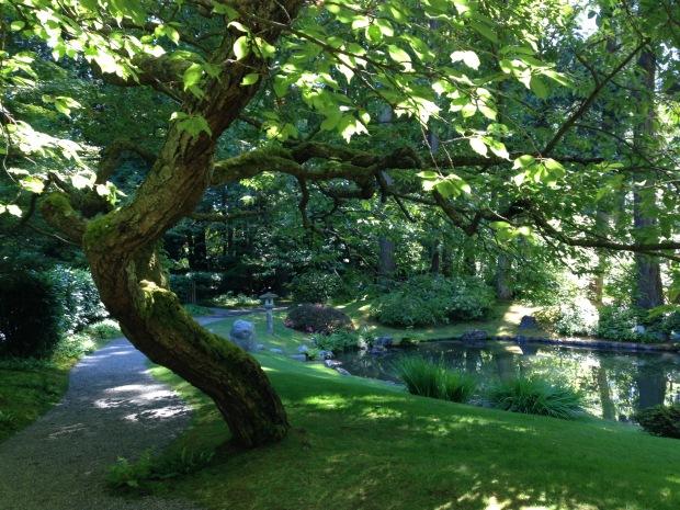 Nitobe Japanese Garden, Vancouver. Janna Schreier
