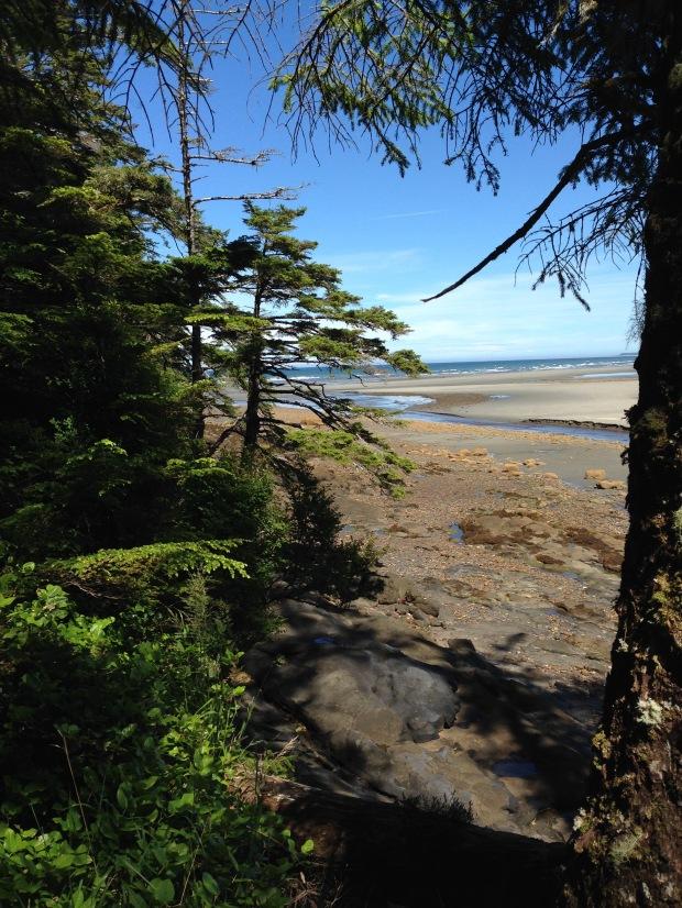 Rose Spit Beach, Haida Gwaii. Janna Schreier