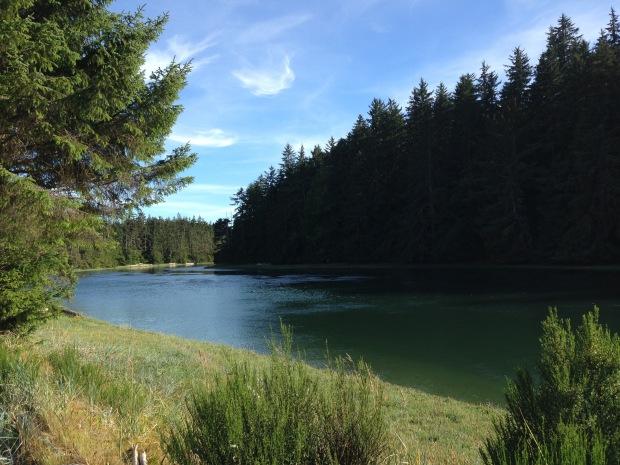 Tlell River, Haida Gwaii. Janna Schreier