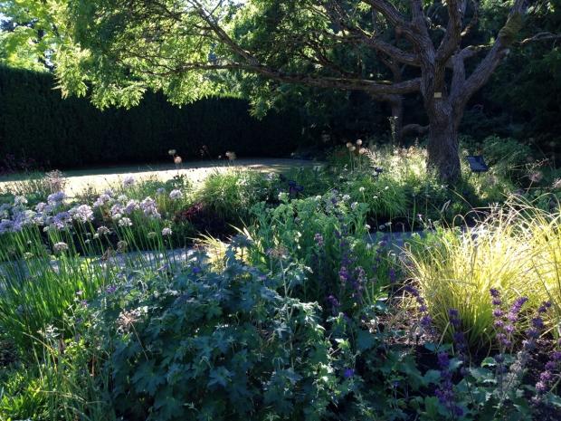 Ethereal planting at VanDusen Botanical Garden