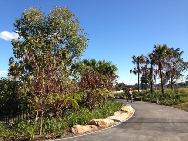 Plantings at the top of Barangaroo Reserve