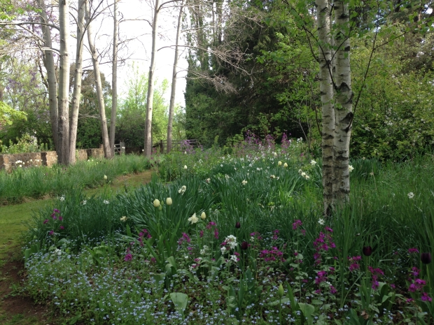 The Churchills converted this former sheep paddock into a wild garden in the early 1980s
