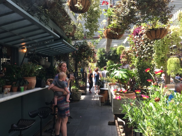 Plants, plants everywhere at the Potting Shed