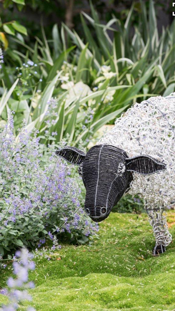 Lisa Ellis garden design