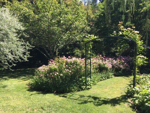 Roses greet you at the entrance to Tieve Tara