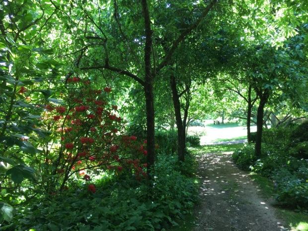 Views beyond draw you through the garden