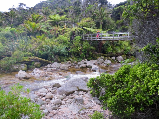 Another pretty bridge across the many creeks on the Heaphy track