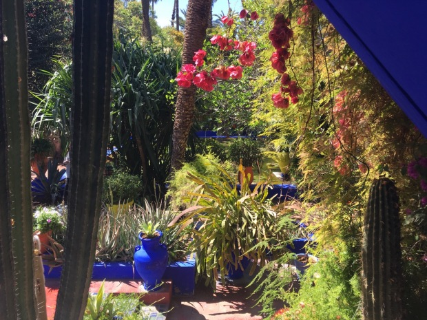 A view out from the Berber Museum; housed in the former painting studio of Jacques Majorelle